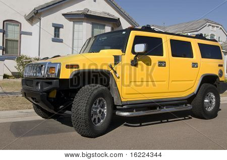 Customized Large SUV