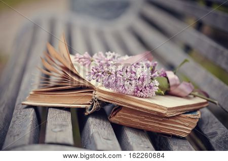 The forgotten books and branch of a lilac lie on a bench.