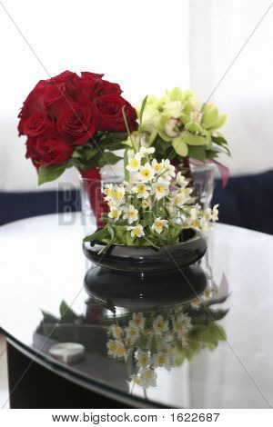 Narcissus Roses Cymbidiums