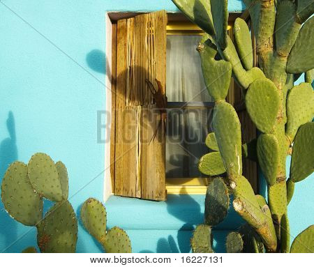 Old rustic architecture in sunny warm climate with window surrounded by cactus