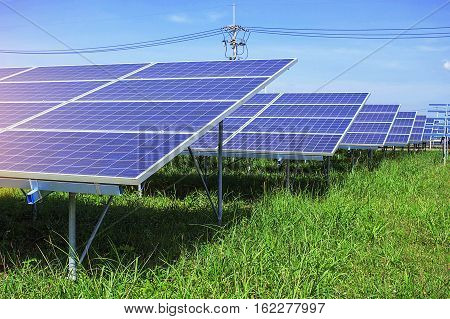 Solar panels on green grass with the sky.