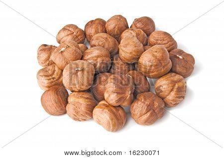 Handful Of Kernels Hazelnut