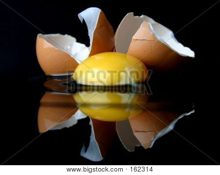 Still-life With A Broken Egg