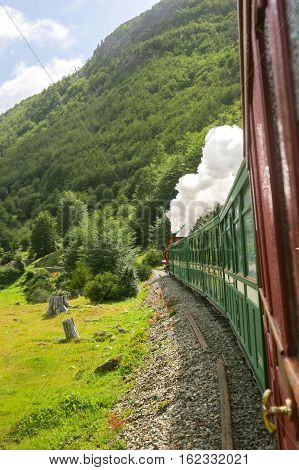 Train Passing In National Park