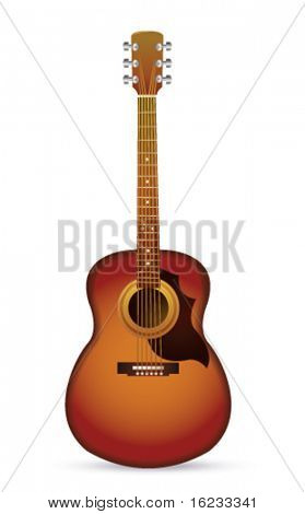 Acoustic guitar on white. Vector