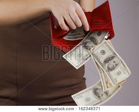 purse with money in the hands of women spending money