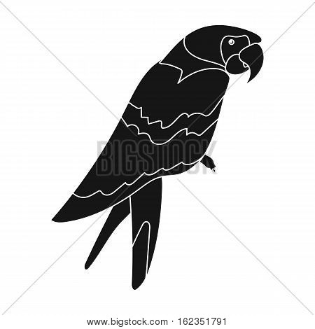 Pirate's parrot icon in black style isolated on white background. Pirates symbol vector illustration.