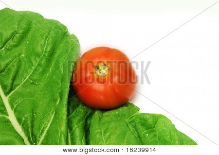spinach and tomato