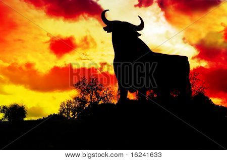spain,silhouette of a bull in the field in Spain