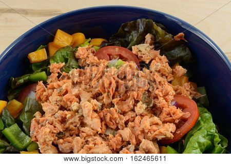 Close up of salmon salad in blue bowl made with red leaf lettuce, bell peppers, tomatoes, onions and canned wild caught sockeye salmon