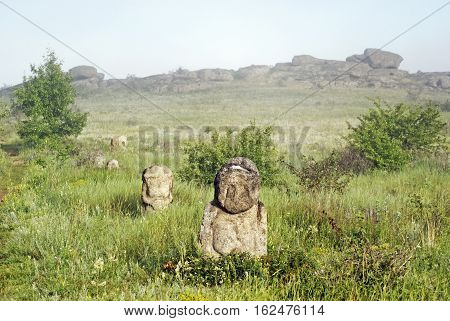 Stone Idol In The Steppe