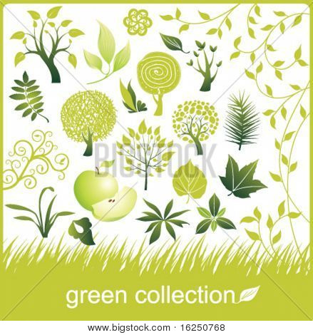 Set of design elements. Green collection. Tree and leaf.