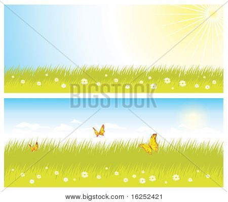 Green grass and sky. Vector version see in my portfolio.