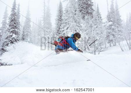 Skier off-piste freeride in forest. ski resort