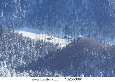 Winter Landscape With Snow Over The Dense Forests In The Mountains Of Brasov, Romania