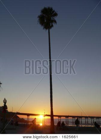 Sunset Ocean Beach Pier