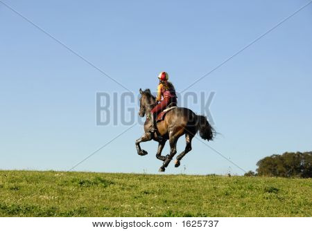 Horseman Galloping At High Speed