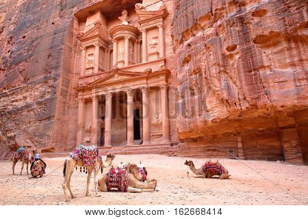 PETRA, JORDAN: The Treasury (Al Khazneh) with camels