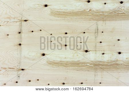 texture of oak wood with knots interspersed