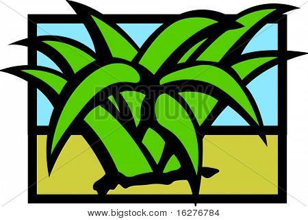 desert agave or maguey plant
