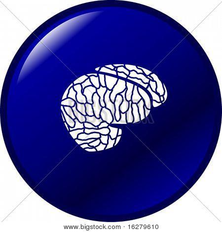 botão de cérebro