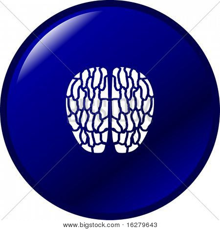 brain button