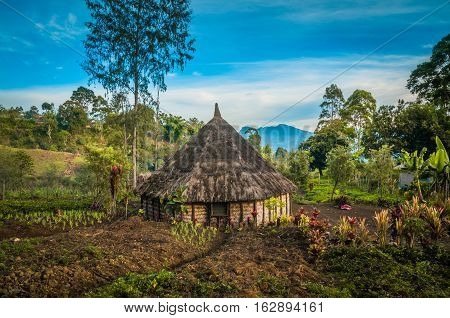 Small House With Garden