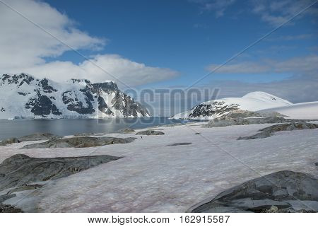 view of the Antarctic Peninsula to neighboring islands with a flowering snow