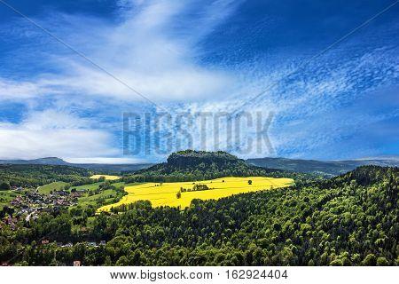 Saxony colza field landscape, Germany. Natural view