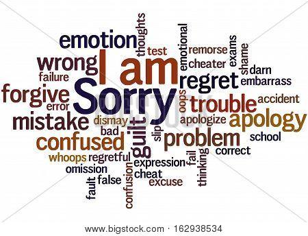 I Am Sorry, Word Cloud Concept