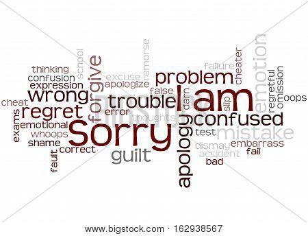 I Am Sorry, Word Cloud Concept 3