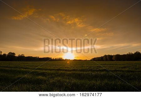 golden sky with a few clouds at sundown and green grass in front