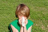 stock photo of hay fever  - hay fever - JPG