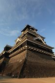 image of shogun  - The Japanese castle - JPG
