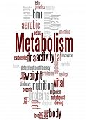 Metabolism, Word Cloud Concept 3 poster