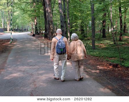 Senior couple strolling in the forest