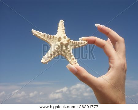 Girl holding a starfish with two fingers against blue sky