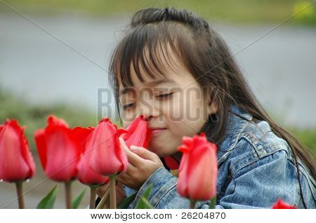 Sweet Little Girl appreciating  Red Tulips