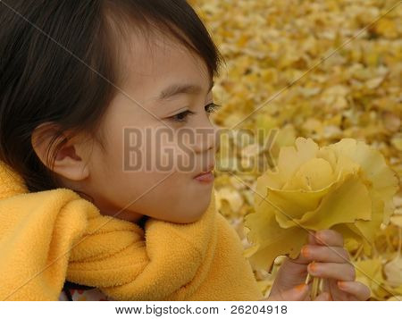 Little girl and yellow ginkgo leaves