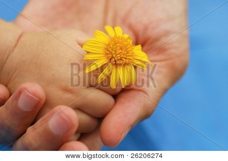 Baby hand with flower in mother's palm