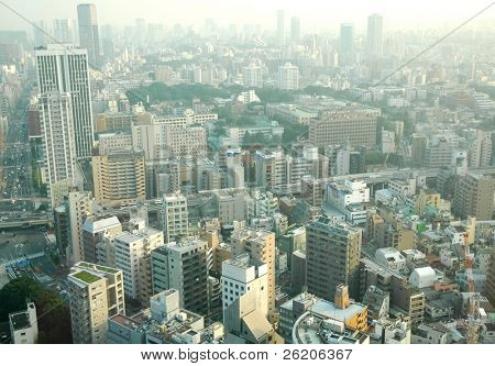 Tokyo City in a hazy day - a view from Tokyo Tower