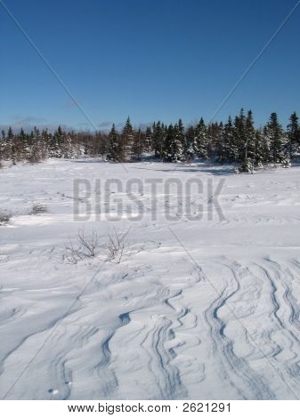 Field Of Snow