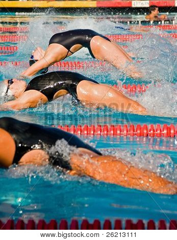 Swimmers and their competition in the pool