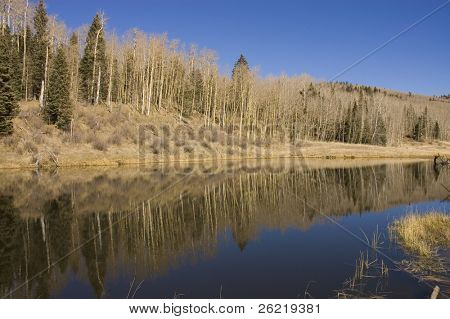a tree lined Mountain lake in New Mexico on the enchanted circle