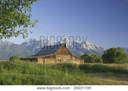 iconic scene of old Mormon barn (circa 1880's) on Mormon Row in the Teton National park