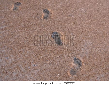 Foot Steps On The Beach