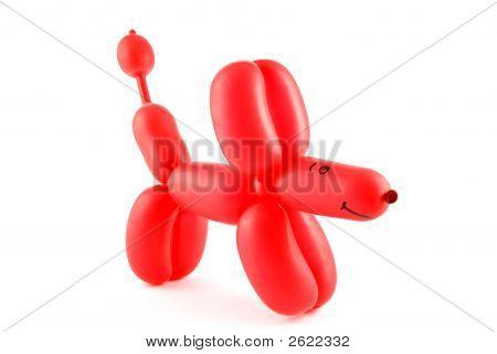 Perro globo