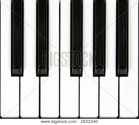 Piano Keyboard Section
