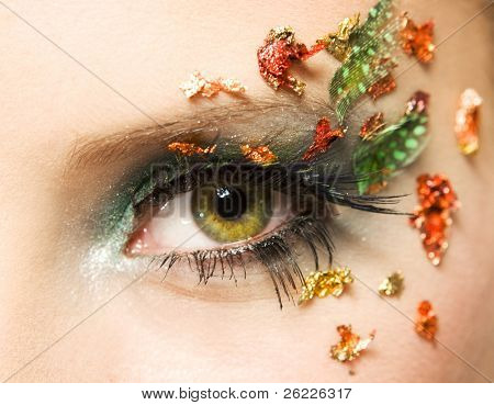 eye with beautiful make-up