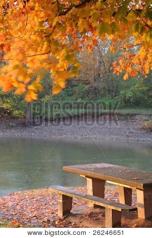 golden fall scene with blowing leaves